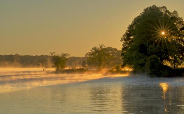Mist on Lake Lanier